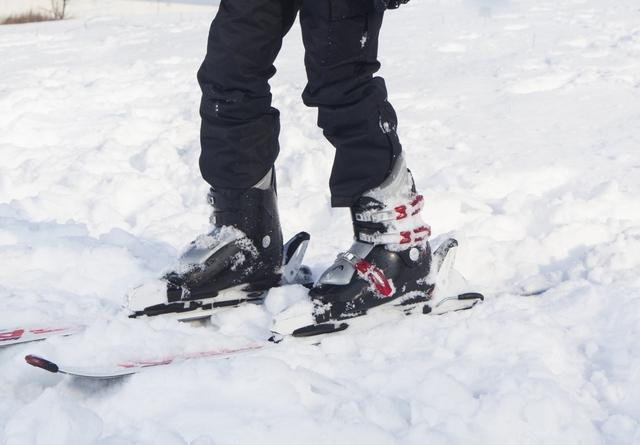 ショートスキーの種類について|スキーの基礎知識