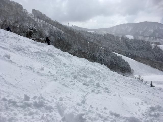 観ても面白いスキー競技2≪フリースタイル≫