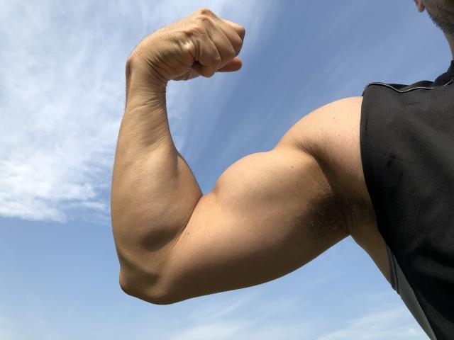 太い上腕二頭筋を作る筋トレメニュー | 自宅で筋トレ