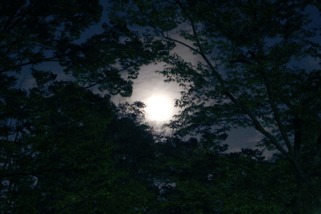 夜戦について | サバゲーのルール