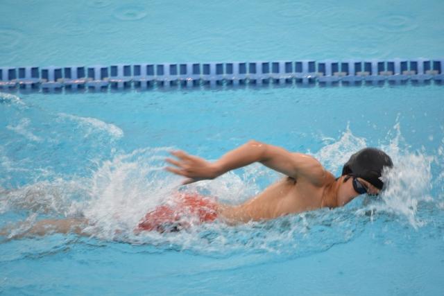 クロールのストローク | 趣味の水泳