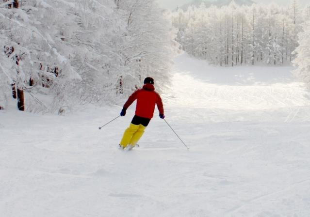 外向傾姿勢のとり方とコツ | スキーの滑り方