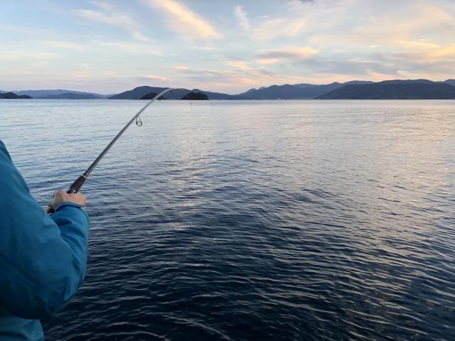 堤防での夜釣りの必須アイテム