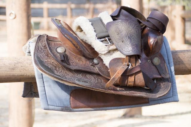 覚えておきたい馬具の名称|乗馬の基本