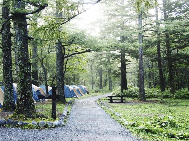 フリーサイトと野営場の違いについて   オートキャンプの基本