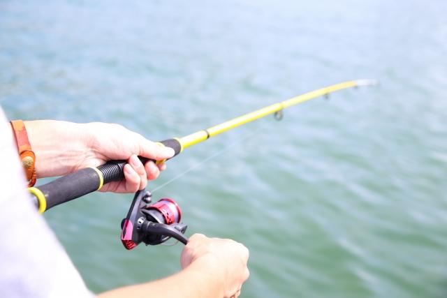 海釣りにおける様々なイトの結び方