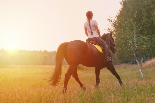 蹄跡行進や輪乗りの注意点 乗馬の馬場での練習