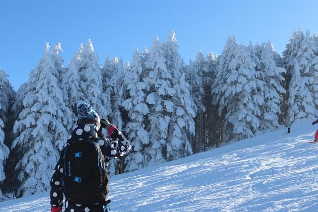 スキーでアイスバーンを攻略するための上達法
