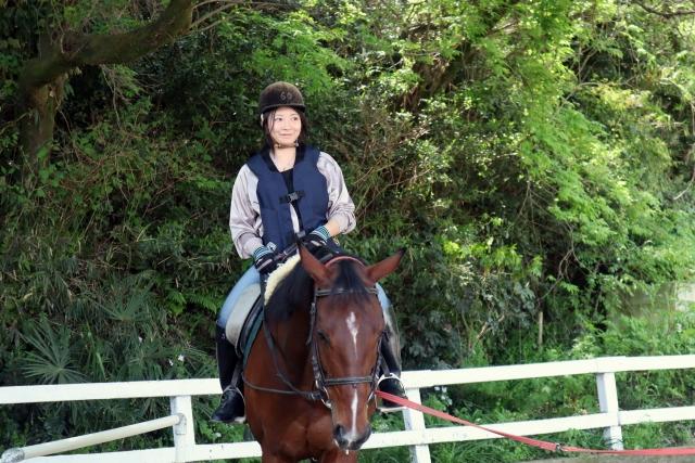口が硬い | 乗馬時の馬の問題行動と対処法