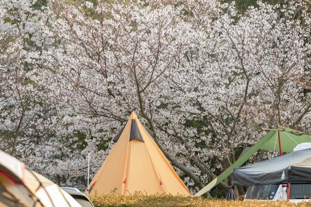 キャンプ初心者におすすめの春秋の服装