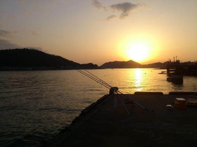 堤防での夜釣りで釣れるポイントの選び方