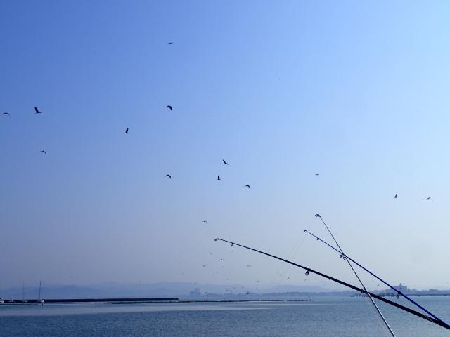 海釣りにおけるノベ竿のセッティング方法