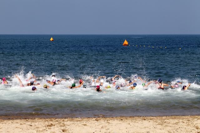 オープンウォータースイム | 趣味の水泳