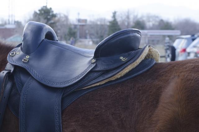 鞍やゼッケンの載せ方 | 乗馬前の準備