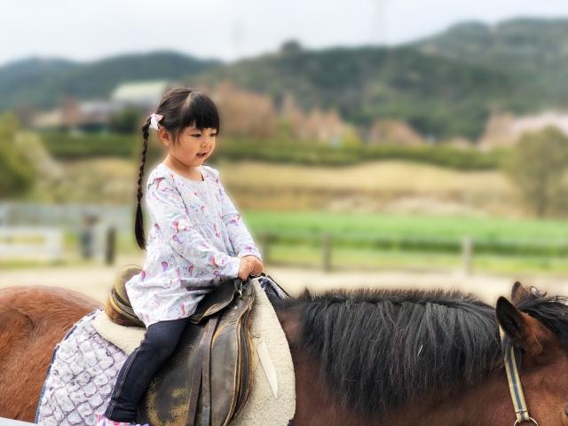 子供の習い事として乗馬がぴったりな理由