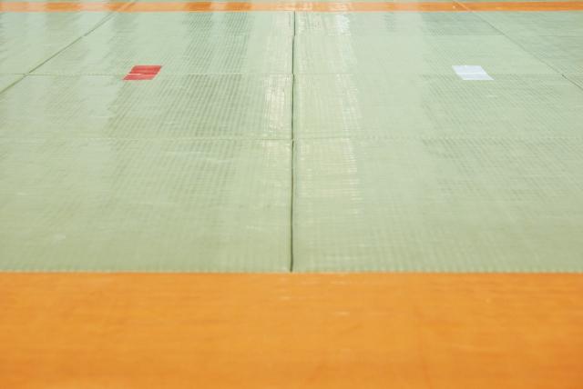 横四方固(よこしほうがため)の基本|柔道の固技