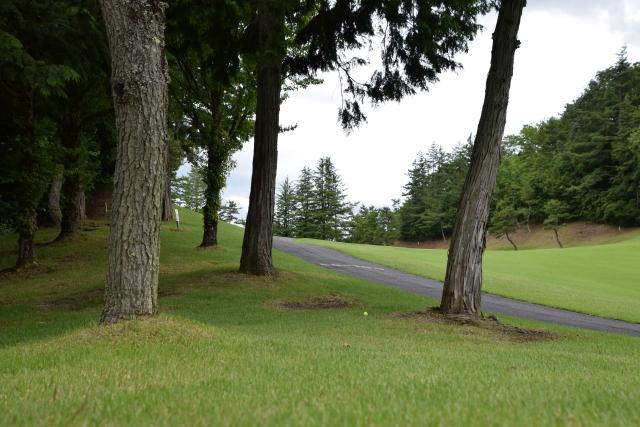 障害物の避け方 | ゴルフのトラブル脱出法