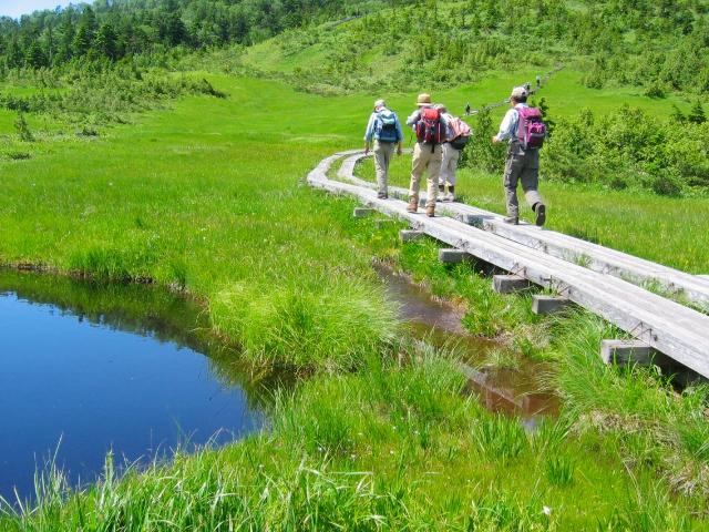 基本的な歩き方 | 大人の登山入門