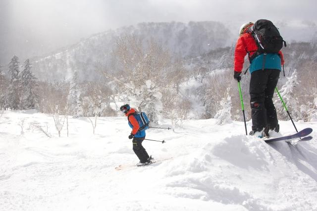 フリーライドスキーとは|スキーの基礎知識