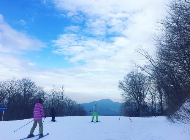 スケーティングのやり方 スキーの滑り方