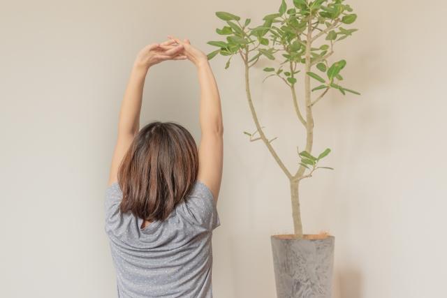 プラサリータ・パドッタナーサナ (開脚前屈)のやり方と効果   ヨガの立位のポーズ